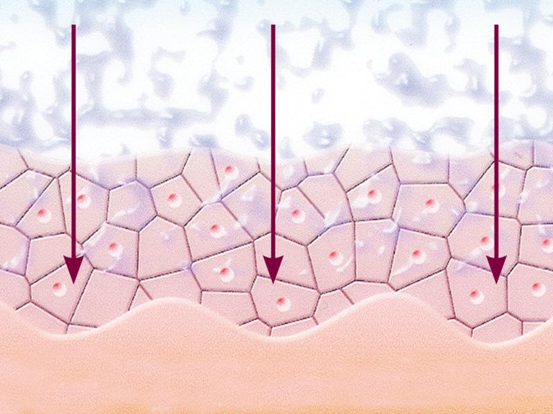 Wirkstoffe werden tief in die Haut gebracht.